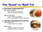 the good vs bad fat
