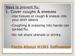 facts about h1n1 influenza6