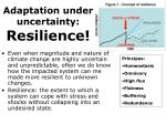 adaptation under uncertainty resilience