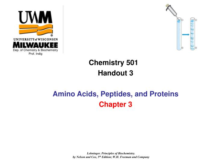 PPT - Chemistry 501 Handout 3 Amino Acids, Peptides, and Proteins