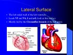 lateral surface