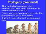 phylogeny continued