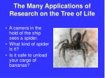the many applications of research on the tree of life46