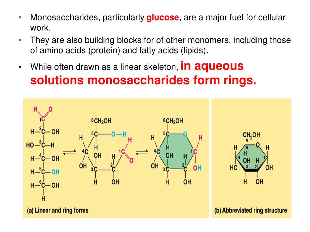 Monosaccharides, particularly