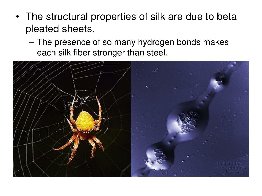 The structural properties of silk are due to beta pleated sheets.