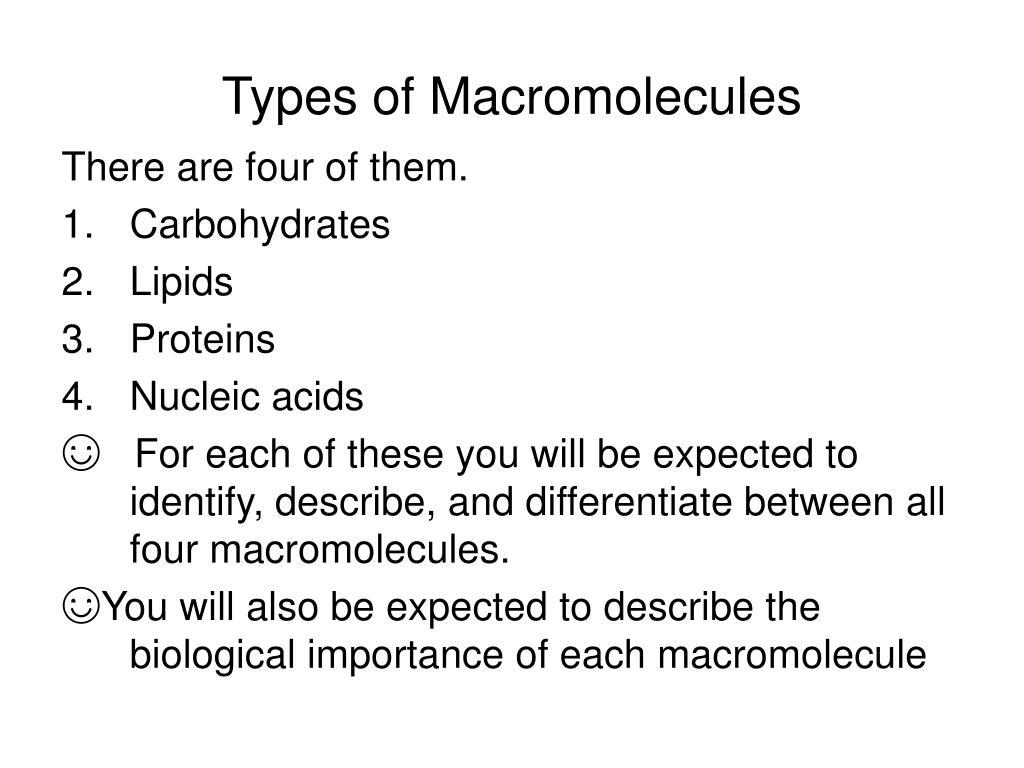 Types of Macromolecules