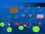 strategic rationale model insurance