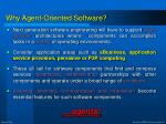 why agent oriented software