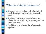 what do whitehat hackers do