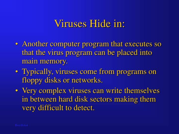 Viruses hide in