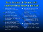 basic features of the new self employed from home in the web