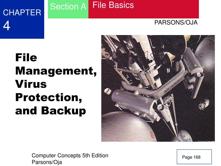 File management virus protection and backup
