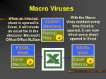 macro viruses9