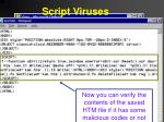 script viruses16