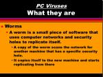 pc viruses what they are12
