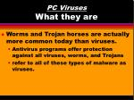 pc viruses what they are13