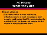 pc viruses what they are8