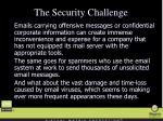 the security challenge