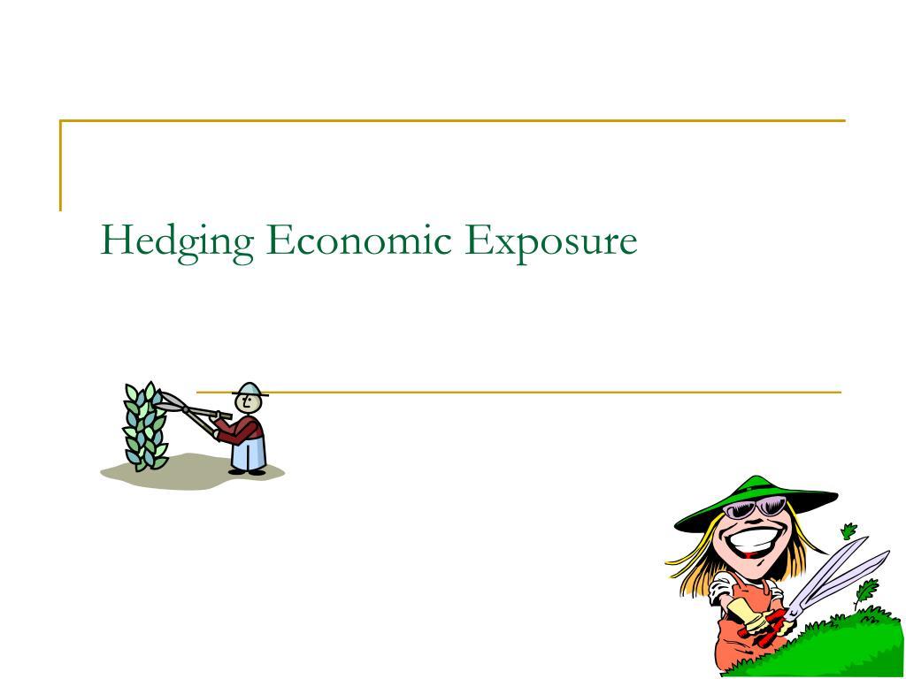 hedging economic exposure l.