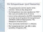 on schopenhauer and nietzsche