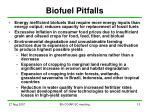 biofuel pitfalls