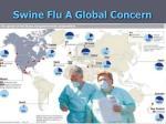 swine flu a global concern