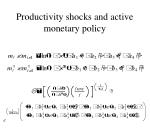 productivity shocks and active monetary policy