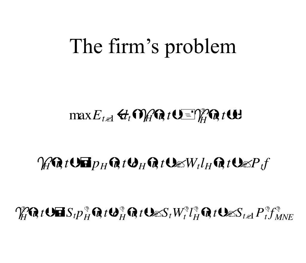 The firm's problem
