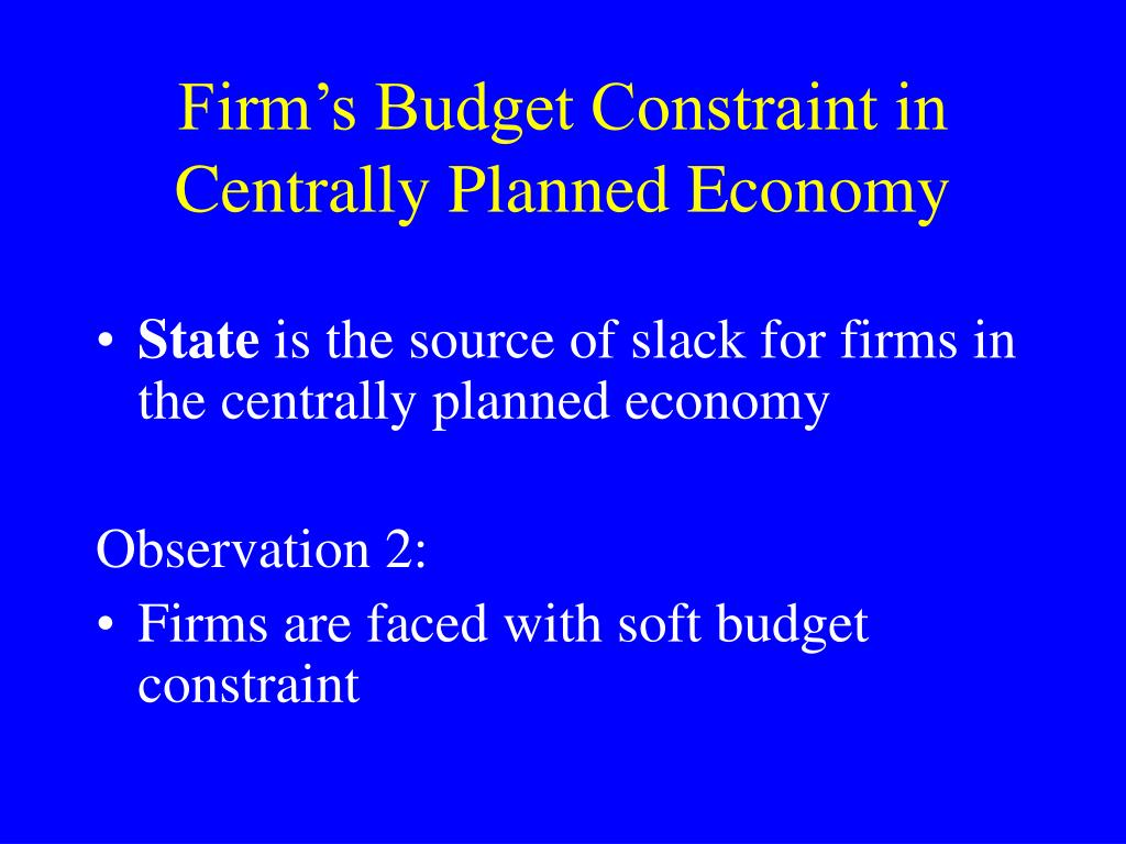 Firm's Budget Constraint in Centrally Planned Economy