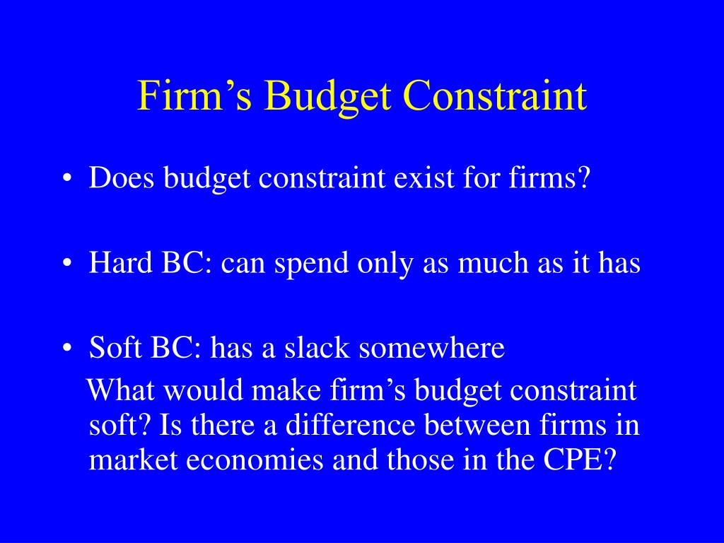 Firm's Budget Constraint