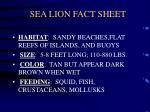sea lion fact sheet