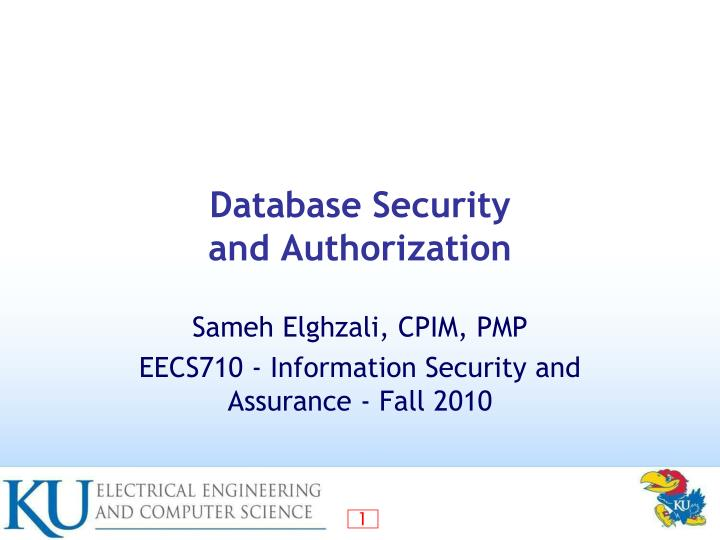 database security and authorization n.