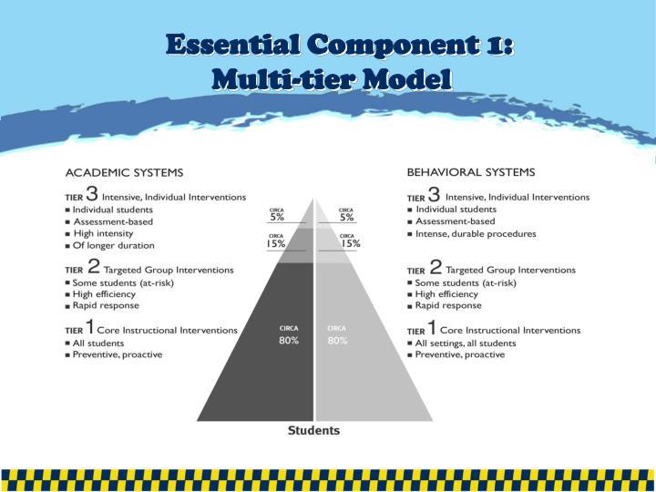 Essential Component 1: