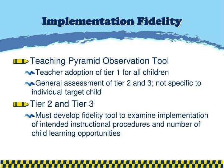 Implementation Fidelity