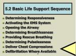 5 2 basic life support sequence