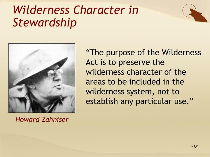 Wilderness Character in