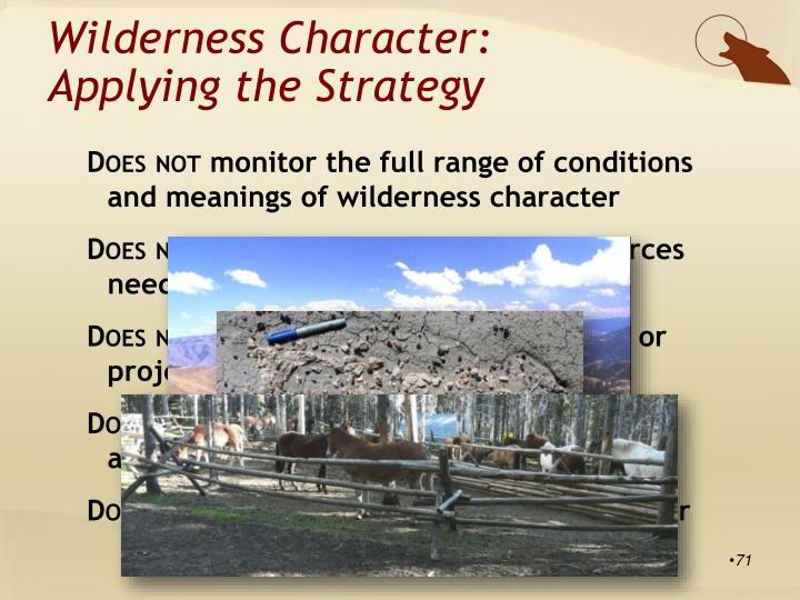 Wilderness Character:
