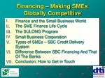 financing making smes globally competitive
