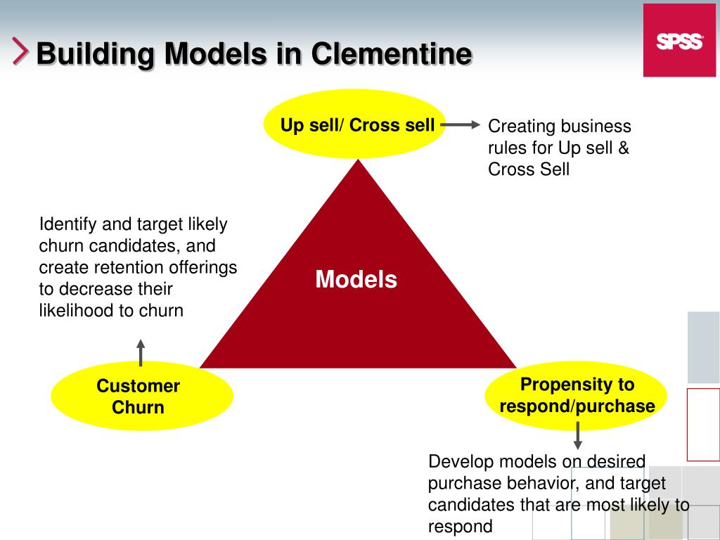Building Models in Clementine