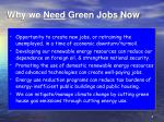 why we need green jobs now