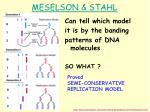 meselson stahl1