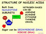 structure of nucleic acids