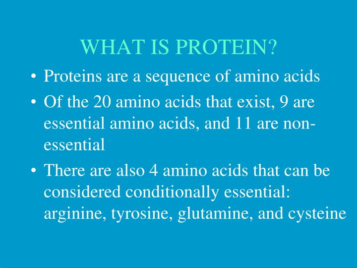 what is protein n.