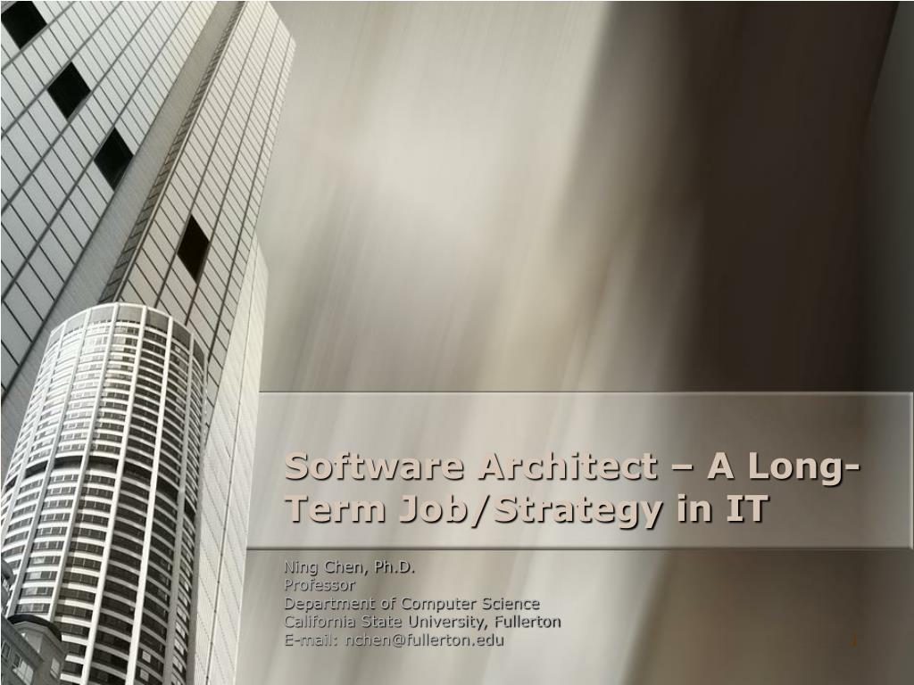 software architect a long term job strategy in it l.