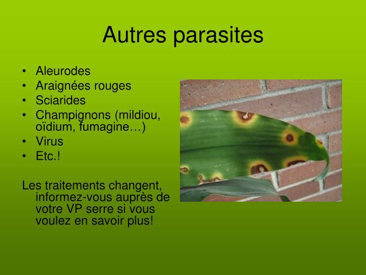 Autres parasites