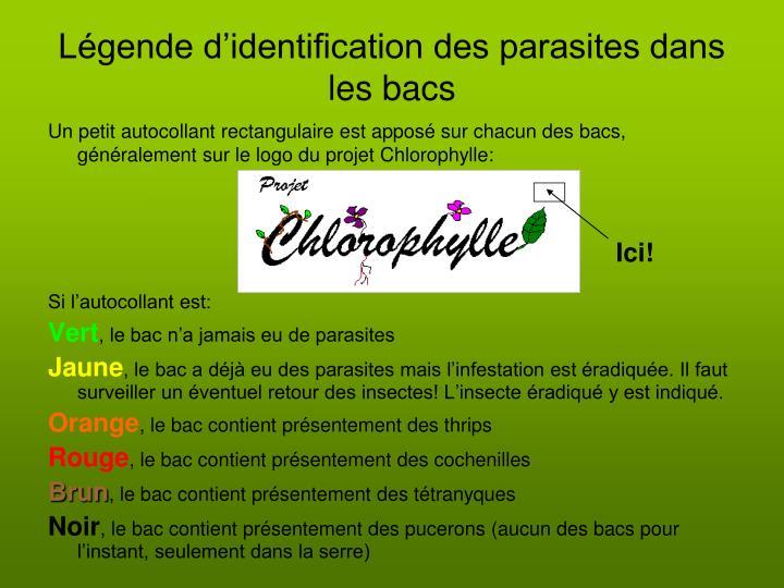 Légende d'identification des parasites dans les bacs