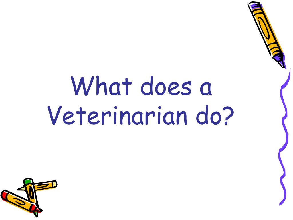 What does a Veterinarian do?