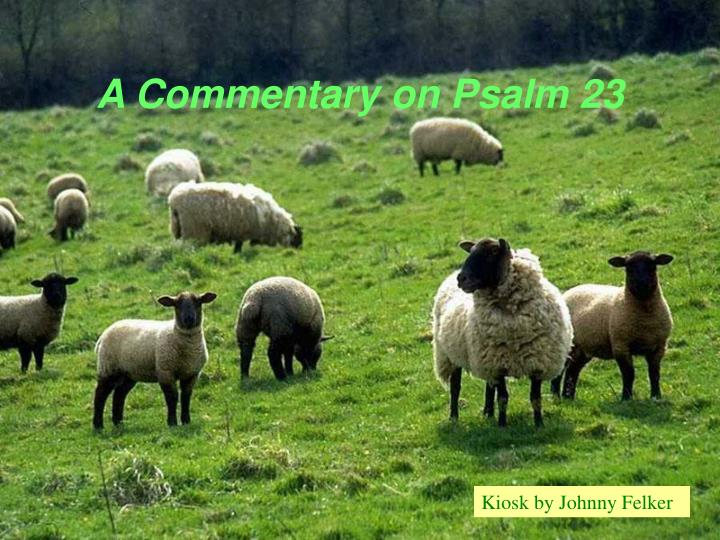 a commentary on psalm 23 n.