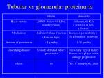 tubular vs glomerular proteinuria