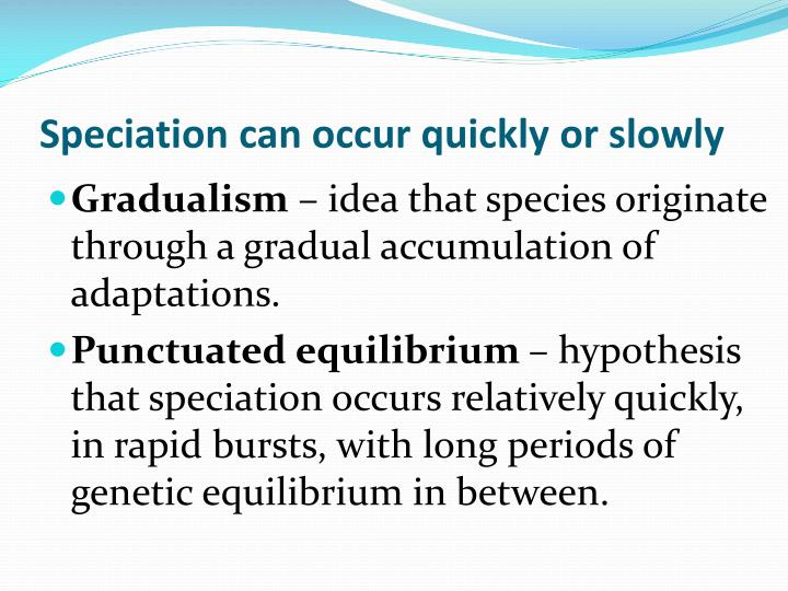 Speciation can occur quickly or slowly